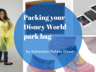 Guide to what you need to pack for a trip to Disney World