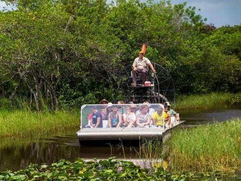 Everglades and Miami Adventure