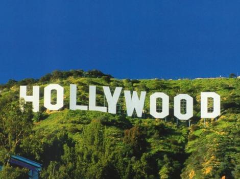 Grand City Tour of LA, Movie Stars' Homes, & Beach Tour from Anaheim