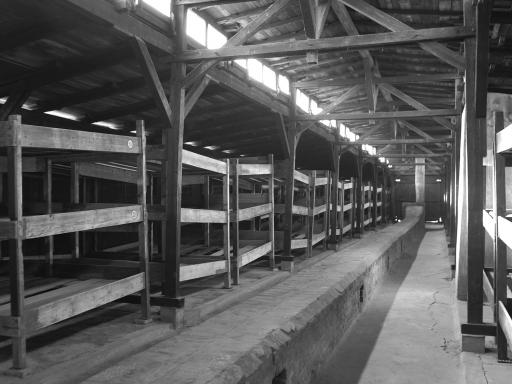 Auschwitz Birkenau Memorial And Museum Tour