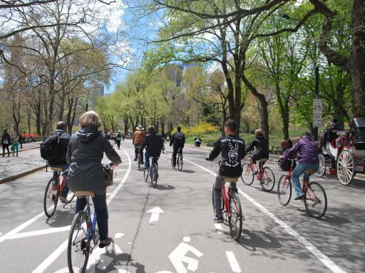 Central Park's acres of trails, tree-lined paths, and cultural monuments are ready-made for a leisurely bike ride. Luckily, Bike Rental Central Park's fleet of more than bicycles makes it easy to hop on a two-wheeler and come within a selfie's distance of all of its enterenjoying.ml: $