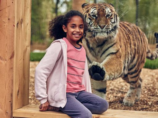 Chessington World of Adventures Resort Tickets