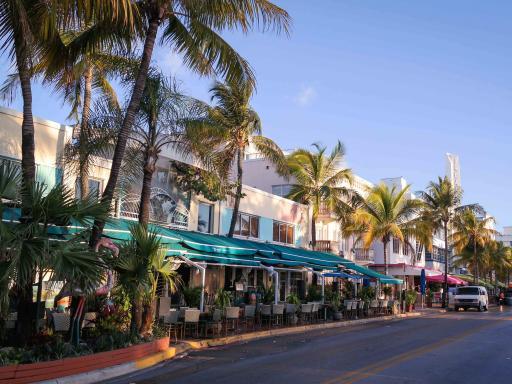 Everglades and Miami Adventure