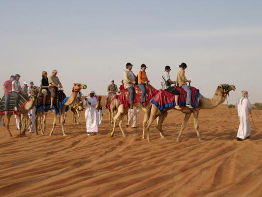 Morning Safari with Sand Surfing and Camel Riding (Private Tour)