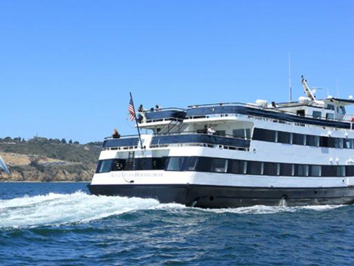 San Diego Whale & Dolphin Watching Cruise