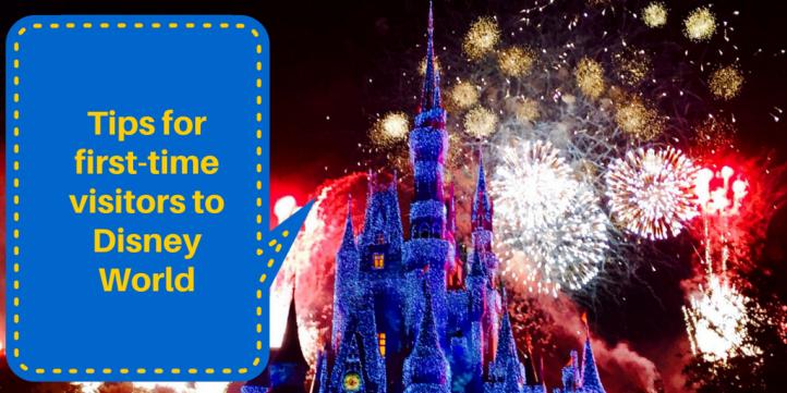 Discounts on Disney Guidebooks - MouseSavers.com
