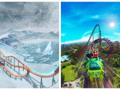 SeaWorld and Busch Gardens Unveil TWO New Coasters  Two new roller coasters are coming to Orlando!