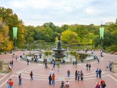 The Best Outdoor Activities in New York