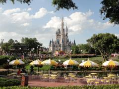 48 Hours at Walt Disney World