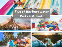 5 of the best water parks in Orlando