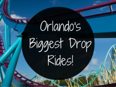The 6 Best Drop Rides in Orlando