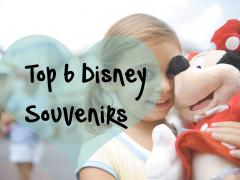 Our Top 6 Disney Souvenirs