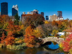 6 Fun Things to do in Central Park