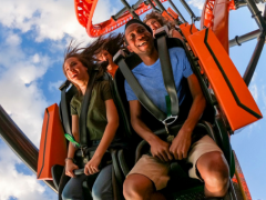 Busch Gardens Reveal Opening Date for Tigris