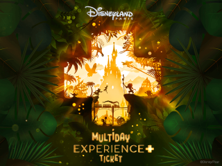 Limited Edition Disneyland® Paris Experience+ Ticket