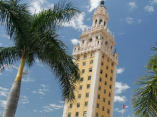 Miami All Loops Bus Tours