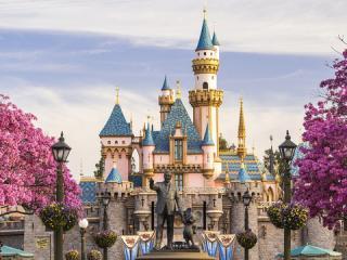 5 Day Disneyland California 1 Park Per Day  Ticket