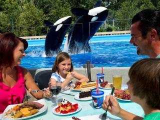 Up-Close Dining at Shamu Stadium