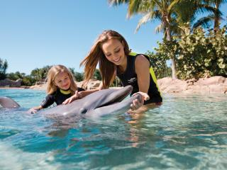 Discovery Cove Ultimate Package with Free Parking