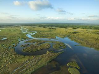 Everglades and Miami Adventure from Orlando