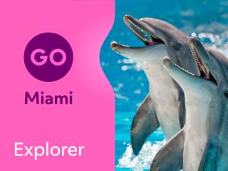 Go Miami Explorer Pass