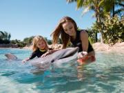 Check out the Discovery Cove tickets from Orlando Ticket Deals