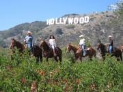 Horseback Ride in the Hollywood Hills