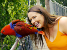 What to Know Before You Go to Loro Parque