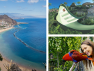 The Best Things to Do in Tenerife