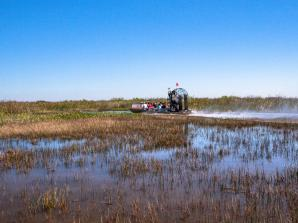 Everglades Tour from Miami with Airboat Ride